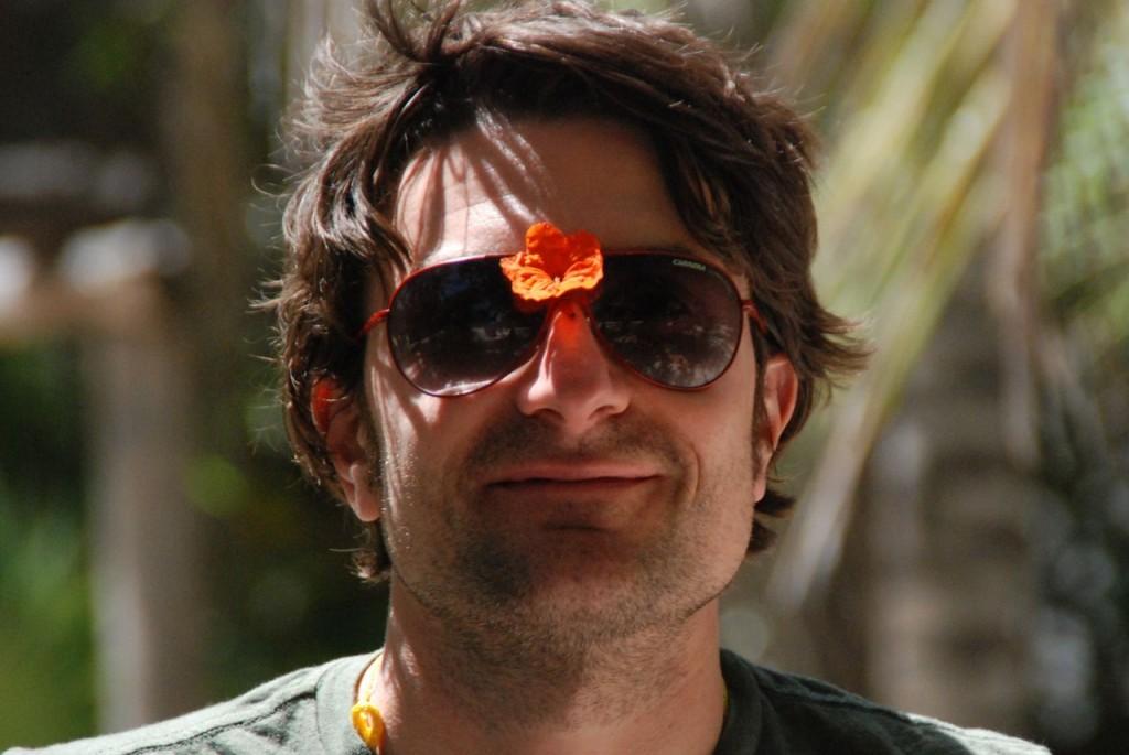dashflower