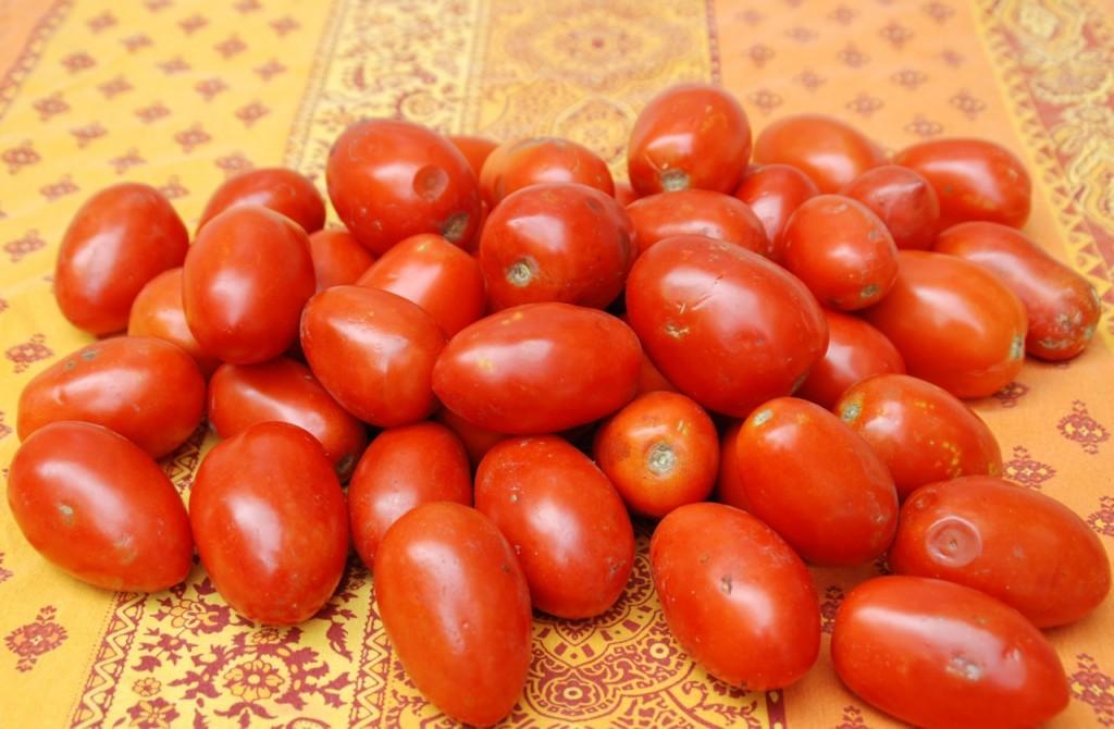 tomatoesout
