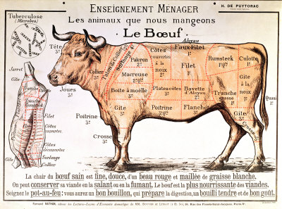 beef-diagram-depicting-the-different-cuts-of-meat-posters