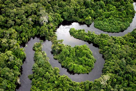 amazon-forest-river-droughts-due-to-global-warming